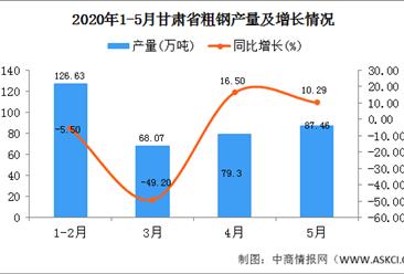 2020年1-5月甘肃省粗钢产量为276.15万吨 同比增长31.03%