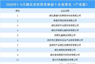 产业地产投资情报:2020上半年湖北省投资拿地前十企业排行榜(产业篇)