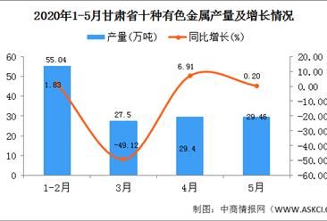 2020年1-5月甘肃省十种有色金属产量为141.38万吨 同比增长26.32%