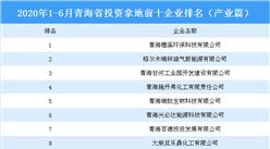 产业地产投资情报:2020年1-6月青海省投资拿地前十企业排行榜(产业篇)