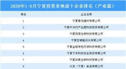 产业地产投资情报:2020年1-6月宁夏投资拿地前十企业排行榜(产业篇)