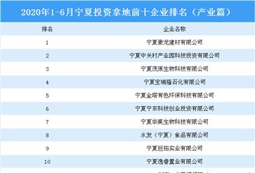 产业地产斥资情报:2020年1-6月宁夏斥资拿地上十集团排行榜(产业篇)