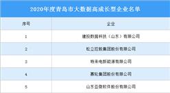 2020年度青岛市大数据高成长型企业名单:20家入围(附完整名单)