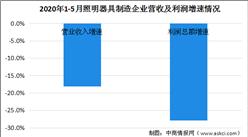 2020年1-5月照明行业运行情况分析及未来发展趋势预测(图)
