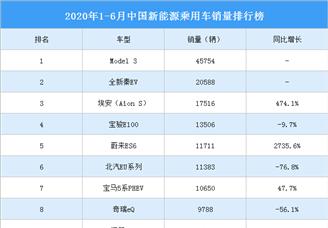 2020年1-6月新能源乘用車銷量排行榜