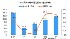 2020年6月中国大豆进口量同比增长28.3%