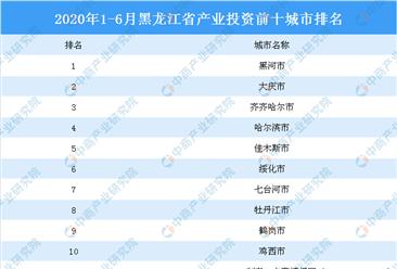 2020上半年黑龙江省产业投资前十城市排名(产业篇)