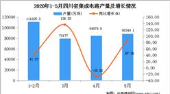 2020年1-5月四川省集成电路产量为36674.20万吨  同比增长753.45%