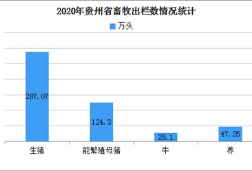 2020上半年贵州省畜牧业跑出恢复发展加速度分析(附图表)