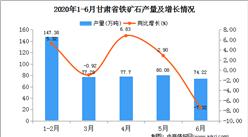 2020年1-6月甘肃省铁矿石产量为456.66万吨  同比增长19.41%