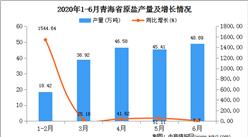 2020年1-6月青海省原盐产量为197.89万吨  同比增长32.82%