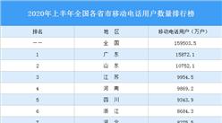 2020年上半年全国各省市移动电话用户数量排行榜:江苏逼近1亿户(图)