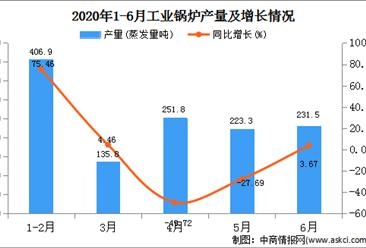 2020年1-6月陕西省工业锅炉产量为1249.30蒸发量吨  同比下降21.03%