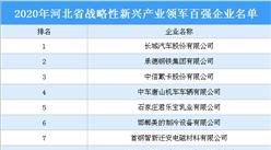 2020年河北省战略性新兴产业领军百强企业排行榜