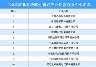2020年河北省战略性新兴产业创新百强企业排行榜