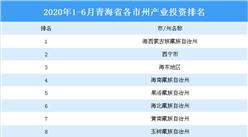 2020上半年青海省各市/州产业投资排名情况分析(产业篇)