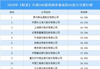 2020年《財富》中國500強利潤率最高的40家公司排行榜(附完整榜單)