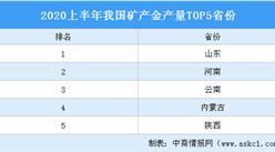 2020上半年全国矿产金产量TOP5省份排行榜