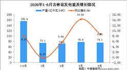 2020年1-6月吉林省发电量同比增长5.8%