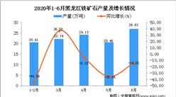 2020年1-6月黑龙江铁矿石产量为113.98万吨 同比下降19.36%