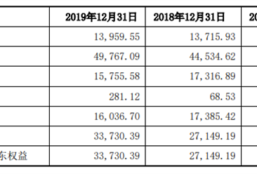 江苏本川智能电路科技首次发布在创业板上市  上市主要存在风险分析