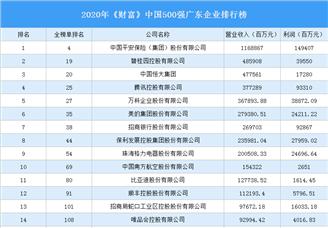 2020年《财富》中国500强广东企业排行榜(附完整榜单)