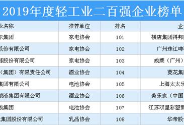 2019年度轻工业二百强企业排行榜