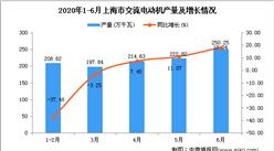 2020年6月上海市交流电动机及增长情况分析