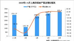 2020年6月上海市发动机产量及增长情况分析