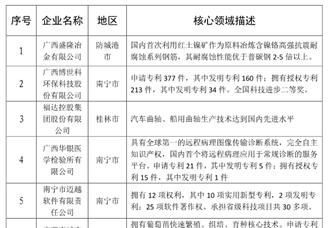 2020年广西最具潜力民营企业排行榜