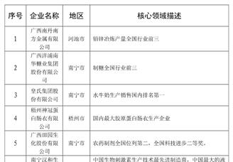 2020年广西最具竞争力的民营企业排行榜(TOP15)