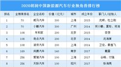 2020胡润中国新能源汽车行业独角兽排行榜
