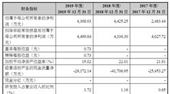 上海雅创电子集团首次发布在创业板上市  上市存在风险分析(附图)