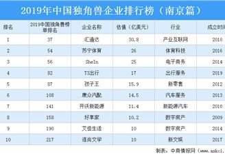 2019年中国独角兽企业排行榜(南京篇)