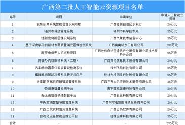 广西第二批人工智能云资源项目名单:共14个项目上榜(附详细名单)