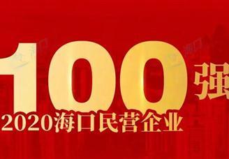 2020年海口市民营企业100强排行榜