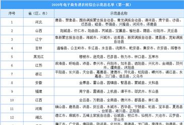 2020年电子商务进农村综合示范县名单出炉(第一批)
