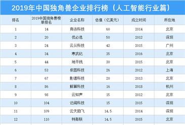 2019年中国独角兽企业排行榜(人工智能行业篇)
