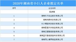 2020年湖南省小巨人企业拟定名单出炉:267家企业上榜(附名单)