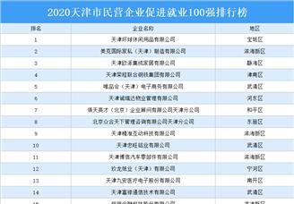 2020年天津市民营企业促进就业100强排行榜