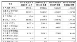 湖南金博碳素首次发布在科创板上市  上市主要存在风险分析(图)