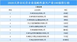 2020年天津市民营企业战略性新兴产业100强排行榜