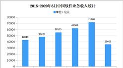 2020年中國軟件行業存在問題及發展前景預測分析