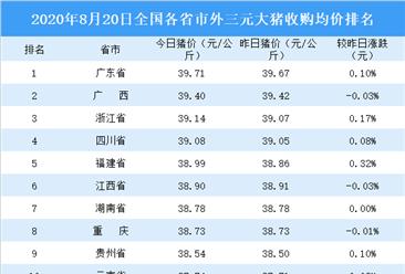 2020年8月20日全国各省市生猪价格排行榜:全国生猪价格主流上涨(附排名)