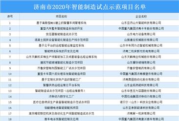 2020年济南市智能制造试点示范项目名单出炉:46个项目上榜(附名单)