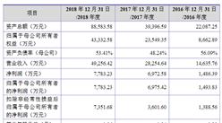 北京八亿时空液晶科技首次发布在科创板上市 上市主要存在风险分析(图)