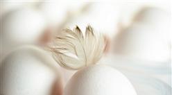 2020年8月禽蛋市场供需及价格预测分析:鸡蛋价格将震荡走高