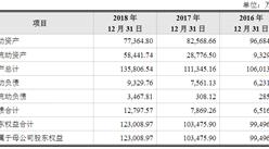 北京天宜上佳高新材料首次发布在科创板上市  上市主要存在风险分析(图)
