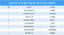 2020年乡村振兴标杆项目TOP10榜单:百色华润希望小镇上榜(附榜单)