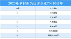 2020年乡村振兴优秀企业TOP10排行榜